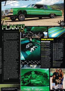 FlakedOut2